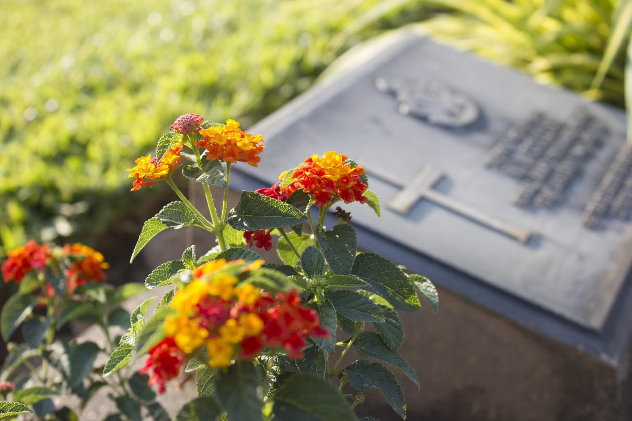 Richmond Memorials Services